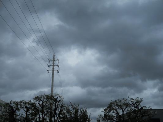 taifuu